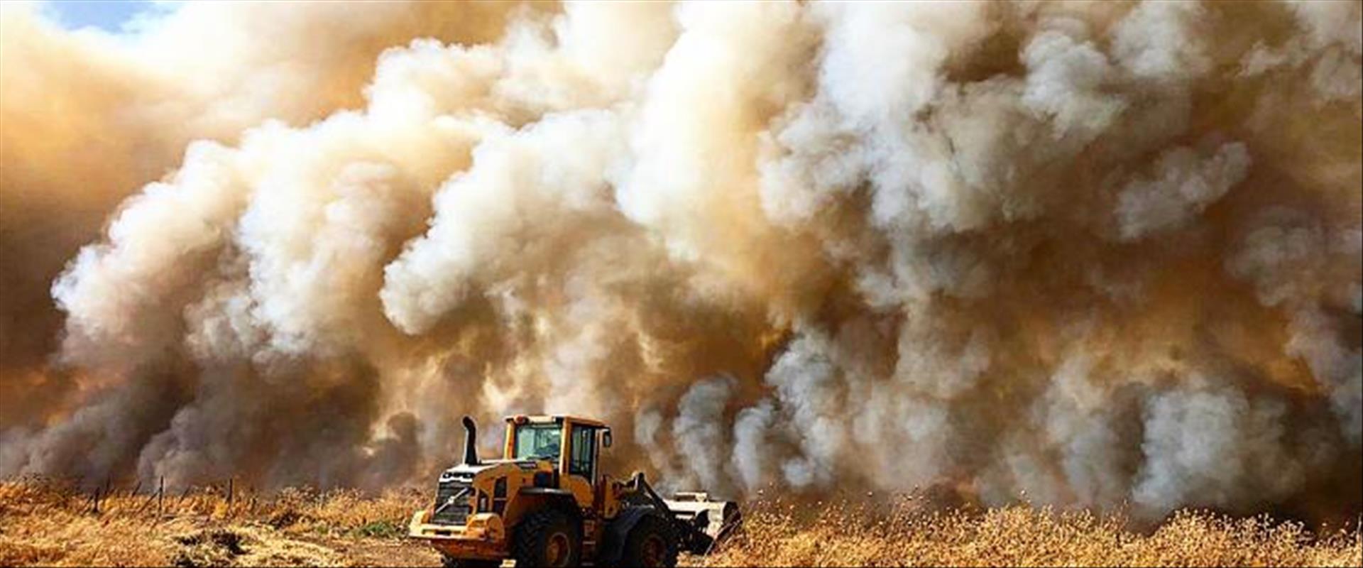 200 000  tonnes de produits agricoles perdues à cause de la criminalité agricole