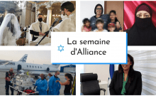 La semaine d'Alliance le magazine