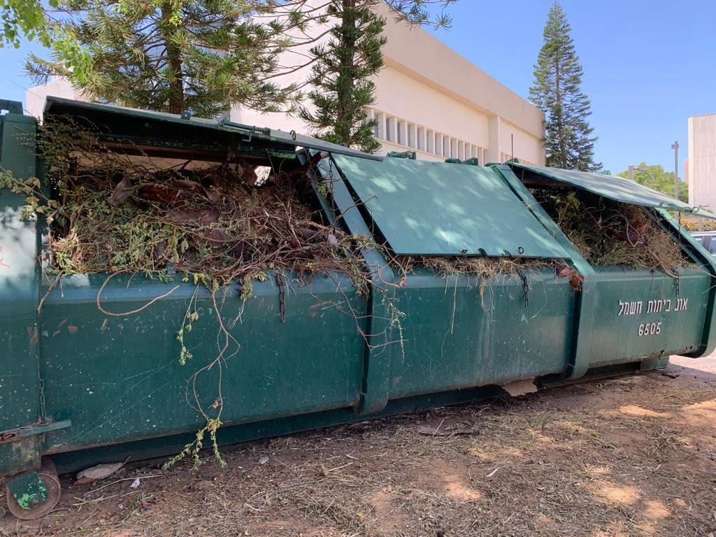 production d'éthanol à partir de déchets végétaux pour les désinfectants