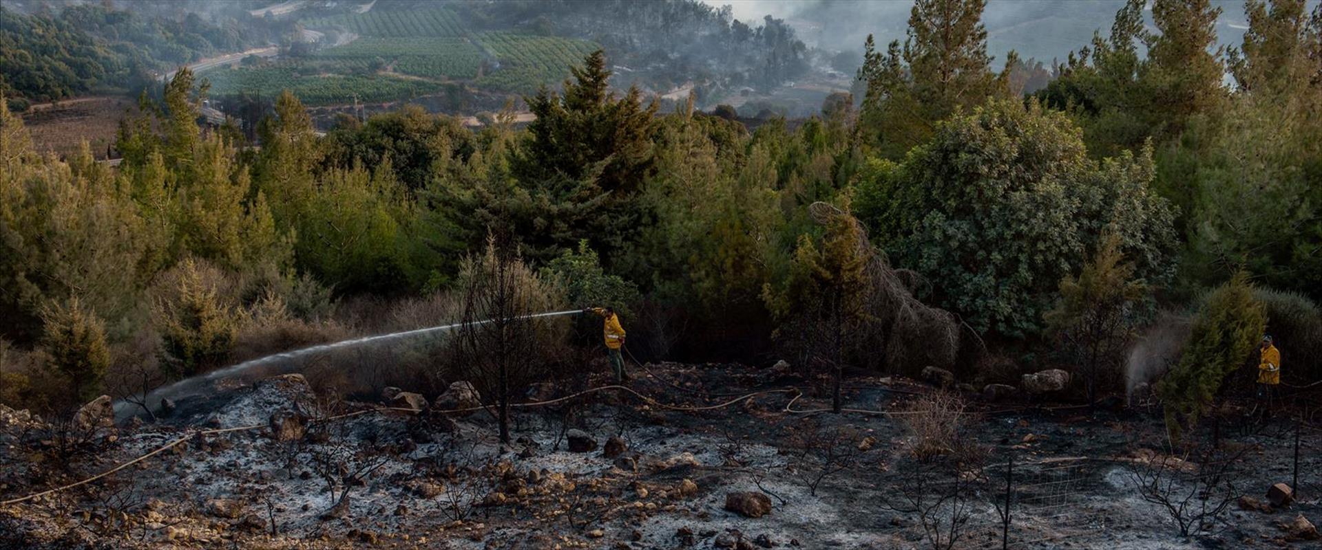 Les incendies en Israël seraient de nature criminelle- vidéo -