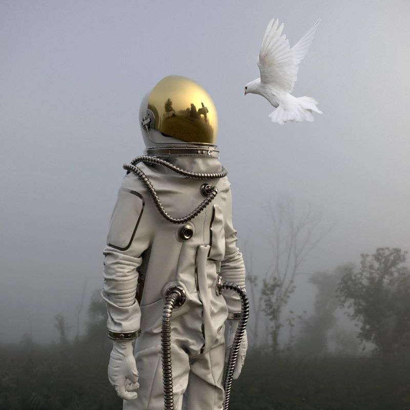 Human & Nature 2020 © Grégoire A Meyer 100 x 100cm 5 000 €