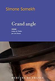 Livre juif : Le grand angle de Simone Somekh