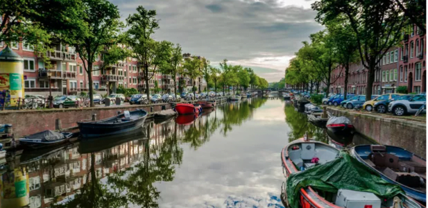 Une maison sur l'eau, d'Emuna Elon: Amsterdam et ses fantômes Un écrivain israélien se rend dans sa ville natale où la guerre a brisé sa famille. Poignant.