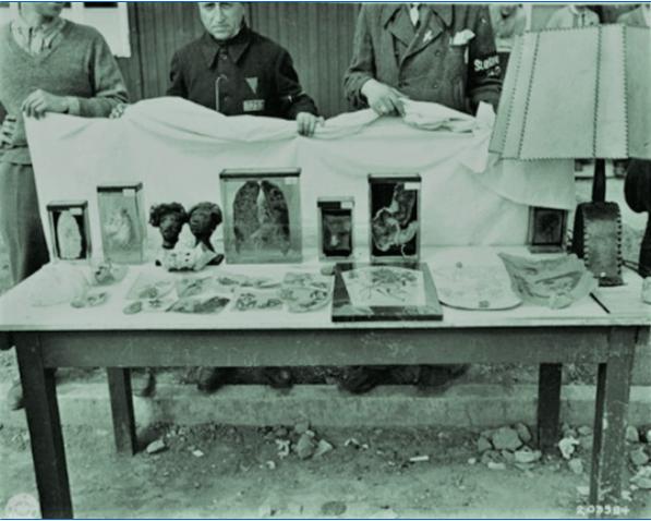 La salope de Buchwald nazie