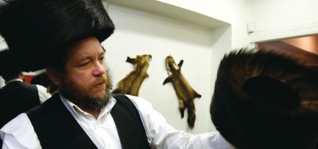 Israël premier pays à interdire le commerce de fourrure animale pour la mode