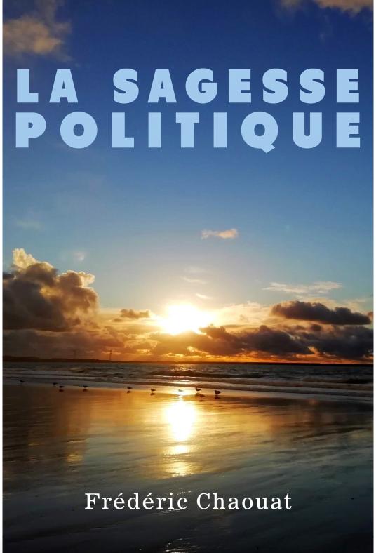 Livre juif : La sagesse politique de Frédéric Chaouat