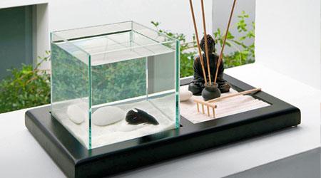 Prix Aquarium Zolux