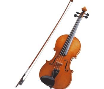 Quand un violon aux champignons bat un stradivarius - La finestra viola ...